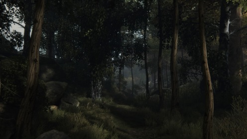 The Vanishing of Ethan Carter_20150801093746